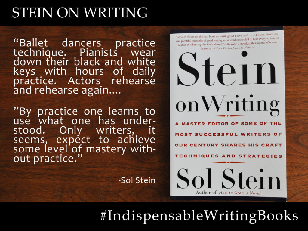 steinonwriting